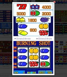 Aparat slot machines Burning Shot