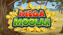 Slot popular cu jackpot de la Microgaming